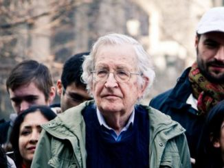 Νόαμ Τσόμσκι: Πλουτονομία και πρεκαριάτο